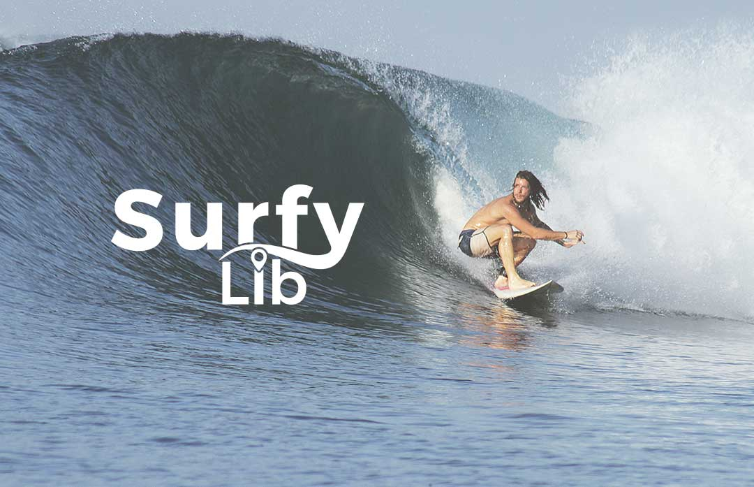 Surfy Lib